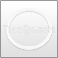 O-Ring (TG505) PTFE