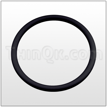 O-Ring (TM12 70 076) FKM/VITON