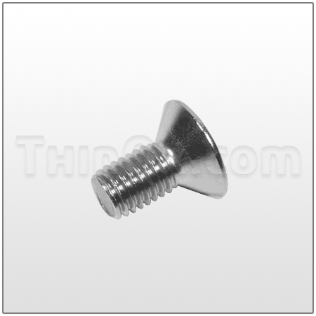Socket head bolt (T6-100-2711)